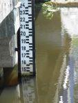 Łata hydrologiczna na kanale Łasica we Władysławowie